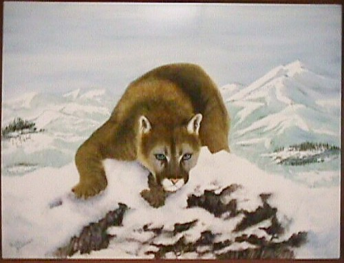 Cougar on a Snowy hillside - Painted by Betty Gerstner, on a Porcelain Steel Plak