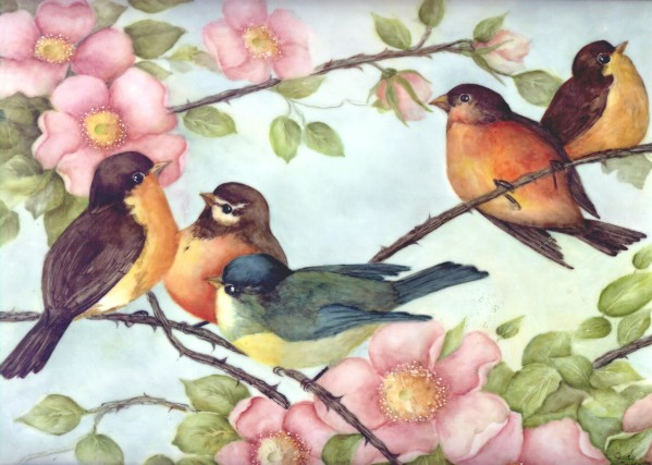 Fantasy Birds Painted by Judy Coventry