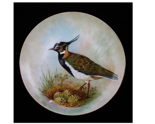 Lapwing Painted by Patricia Burt